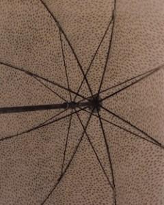 besanko umbrella Robert Besanko